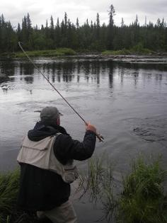 Fly Fishing for Grayling in Swedish Lapland