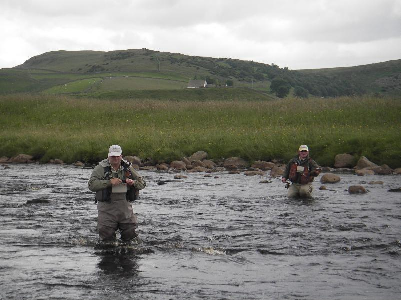Wild Fly Fishing Upper River Tees
