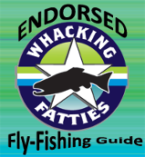 Endorsed Fly Fishing Guide
